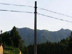 水泥电杆安装施工案例