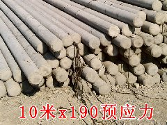 10米预应力电杆x190