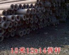 12米水泥电线杆12x14