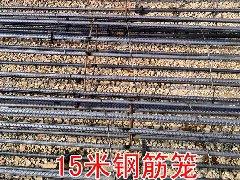 15米水泥电线杆钢筋笼
